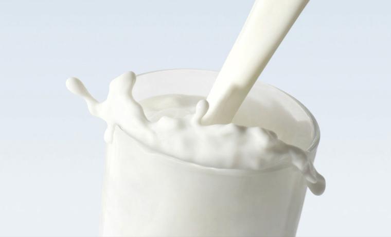 8 preguntas, y sus respuestas, sobre el papel de la leche y los productos lácteos en la nutrición humana