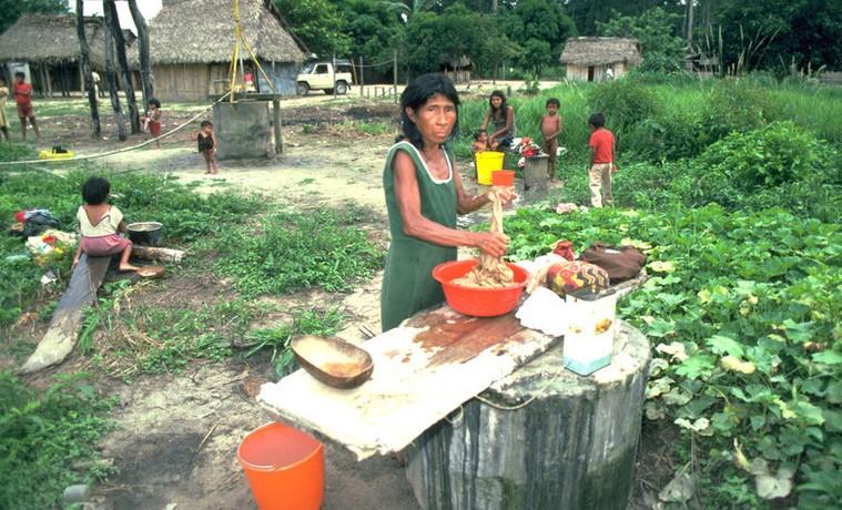 La agricultura con cara de mujer – Parte II