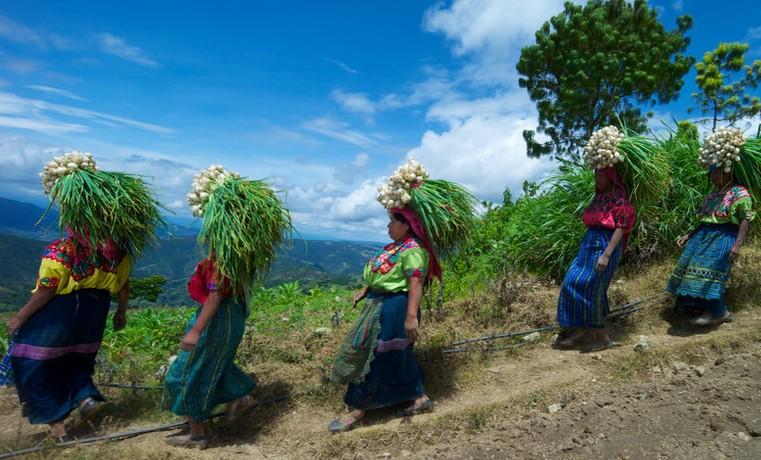 La agricultura con cara de mujer – Parte III