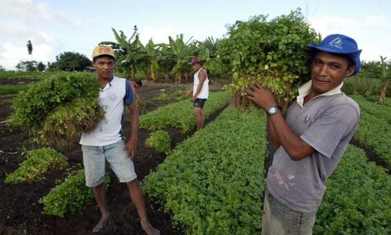 Los pequeños agricultores tienen pleno derecho a un asiento reservado en las negociaciones sobre el cambio climático