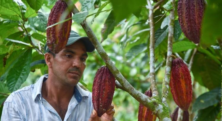 Colombia: Tierra de oportunidades para los pequeños agricultores