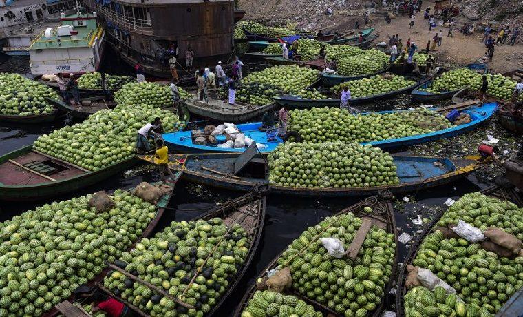 El conflicto, la inestabilidad y el hambre