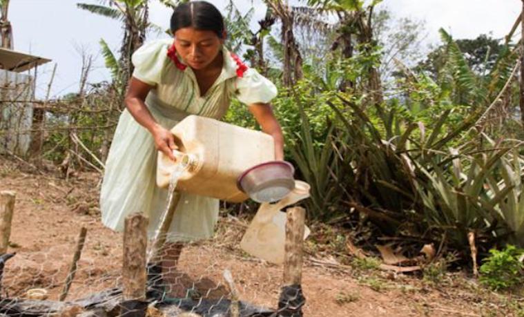 Lo que deberíamos saber sobre la crisis humanitaria en Centroamérica