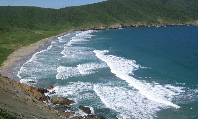 El Caribe colombiano, modelo de conservación de especies marinas y terrestres
