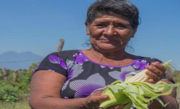 Agricultura Familiar, más que producir alimentos