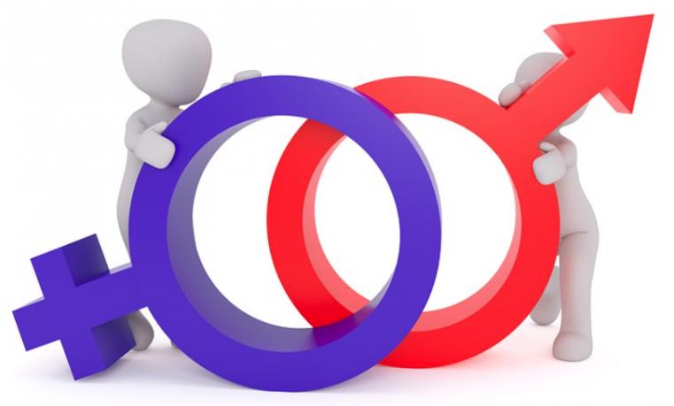 Los Derechos Humanos de la Mujer en el Estado Social de Derecho