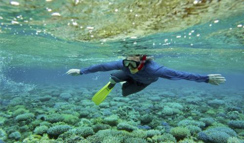 El turismo sostenible puede impulsar la economía azul