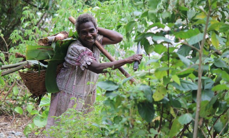 10 cosas que deberías saber sobre los bosques