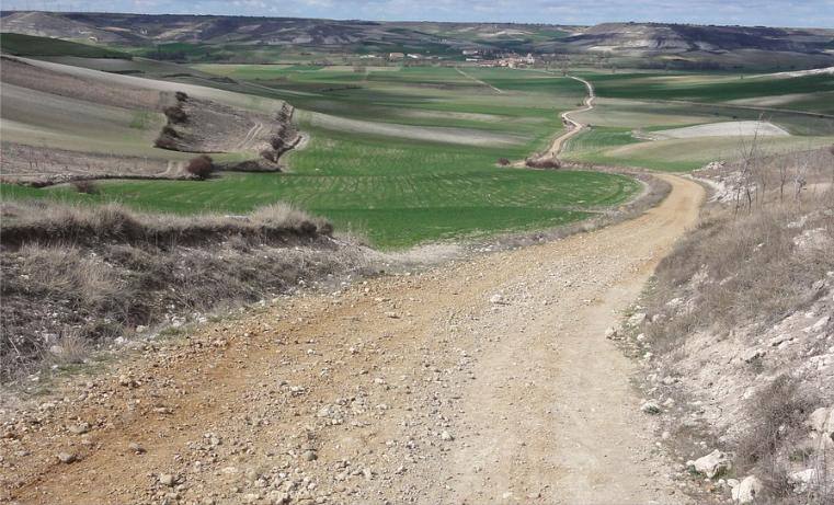 El Camino de Santiago: una lección de vida