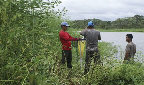 A proteger 21 humedales del departamento del Amazonas