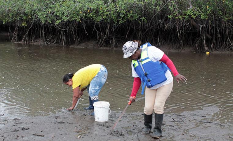 Una nueva vida para las mujeres de la industria de la pesca artesanal de Colombia
