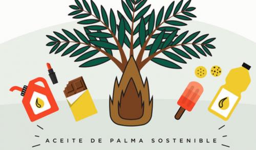 Apoyando a la palma sostenible en América Latina y el Caribe