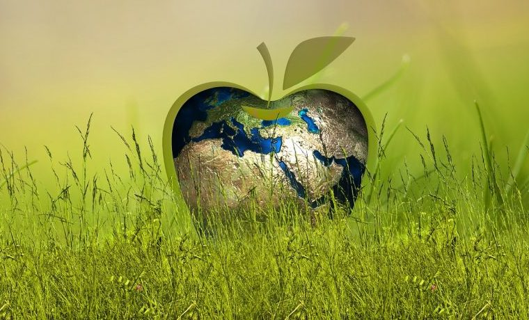 La agroecología, clave para el futuro de la humanidad