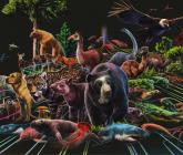 Así era la Colombia biodiversa de Hace Tiempo