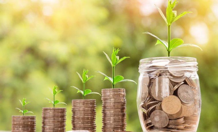 Economías, economías alternativas y sustentabilidad