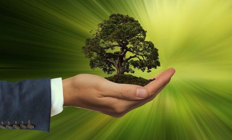 Objetivos de Desarrollo Sostenible: Una inversión rentable!