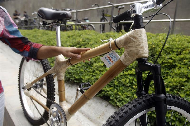 Un hombres sostiene una bicicleta construida con bambú hoy, viernes 27 de febrero de 2015, durante el IV Foro Mundial de la Bicicleta que se lleva a cabo en Medellín (Colombia). El foro se realiza desde el 26 de febrero hasta el 1 de marzo. EFE/LUIS EDUARDO NORIEGA