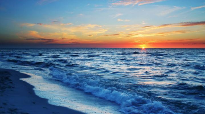 Acidez de los océanos causó la mayor extinción de especies de la Tierra