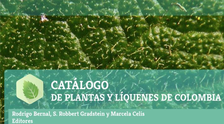 Colombia tiene más de 27.000 especies de plantas y líquenes
