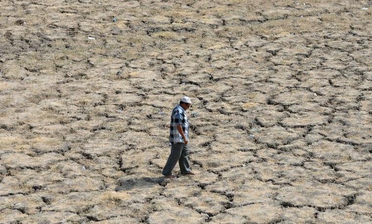Aumentan los muertos en India por ola de calor