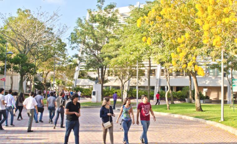 Primer Doctorado en Derecho de la Región Caribe (Universidad del Norte)