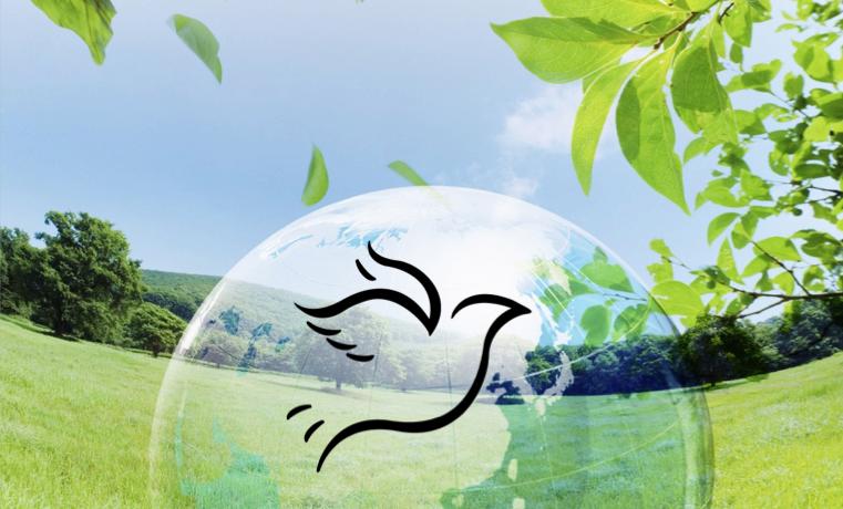 Medio ambiente y posconflicto