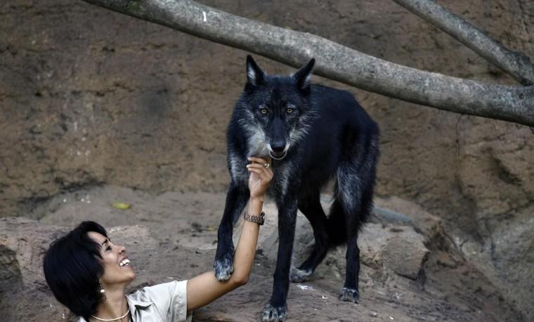Hansel y Gretel en el zoológico de Guatemala