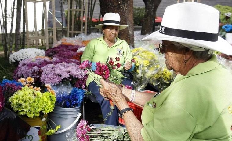 """""""Gigantes de flores"""" reciben a visitantes de feria en Medellín"""