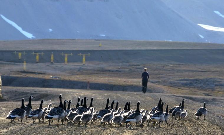 El observatorio de Ny Alesund, testigo del vertiginoso cambio climatico en el Ártico