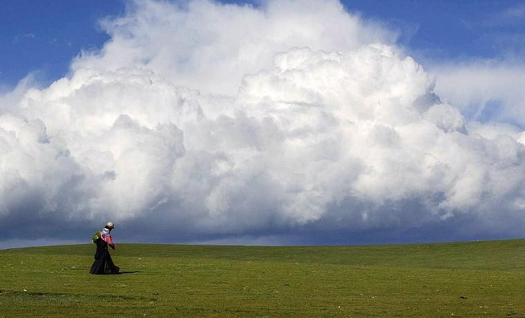 """""""Esencial"""" poner precio al carbono para luchar contra cambio climático: OCDE"""
