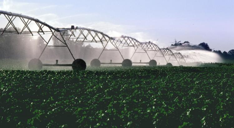 La ciencia, la tecnología y la innovación son factores clave para la transformación de los sistemas agroalimentarios