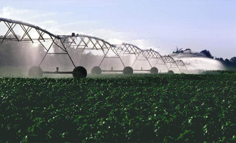 De acuerdo con el IICA, América Latina debe adaptar tecnología agrícola para duplicar producción