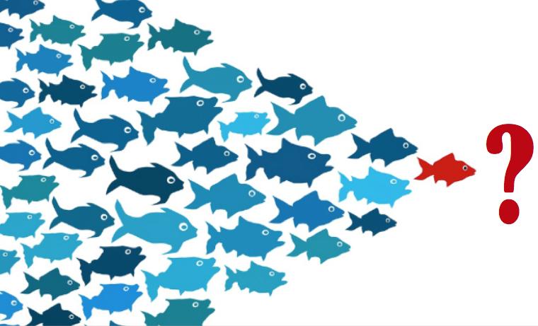 Liderazgo adaptativo: Quebrando con los paradigmas