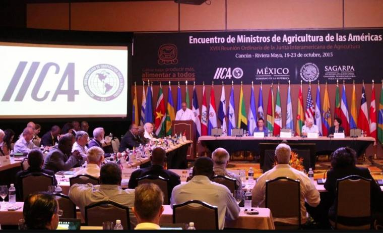 IICA premiará obras musicales con aporte a la paz de campesinos colombianos