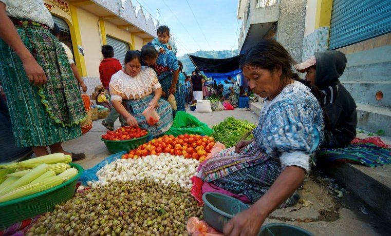 Se fortalecen los programas de asistencia alimentaria a nivel mundial