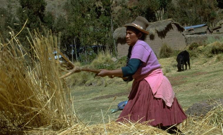 Archivo. Peru - Desarrollo del proyecto Corredor Puno-Cusco - May 2000. ©IFAD/Susan Beccio