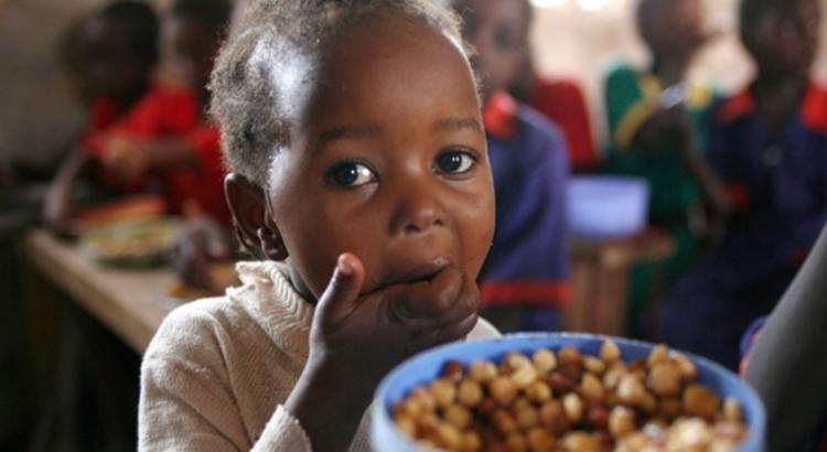La ayuda humanitaria no basta por sí sola para resolver el problema del hambre