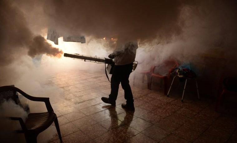 El virus zika: una nueva amenaza para la salud humana