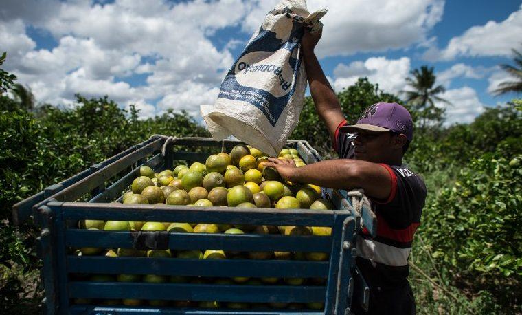 América Latina y el Caribe se alejan de la meta del Hambre Cero en 2030