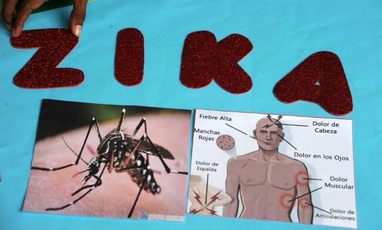 No habrá pruebas a gran escala de vacunas contra el zika antes de 18 meses