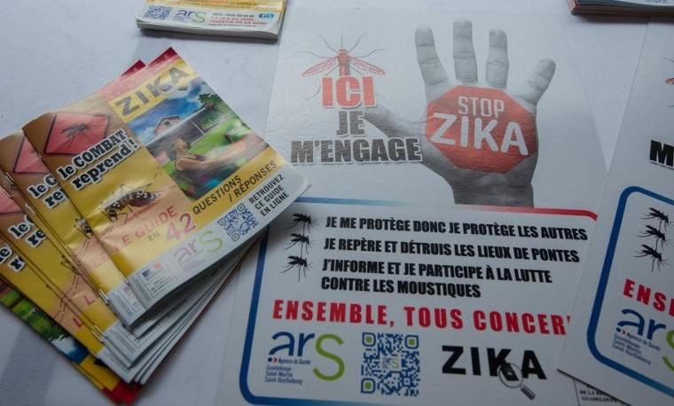 Pika mieditis propagación del zika