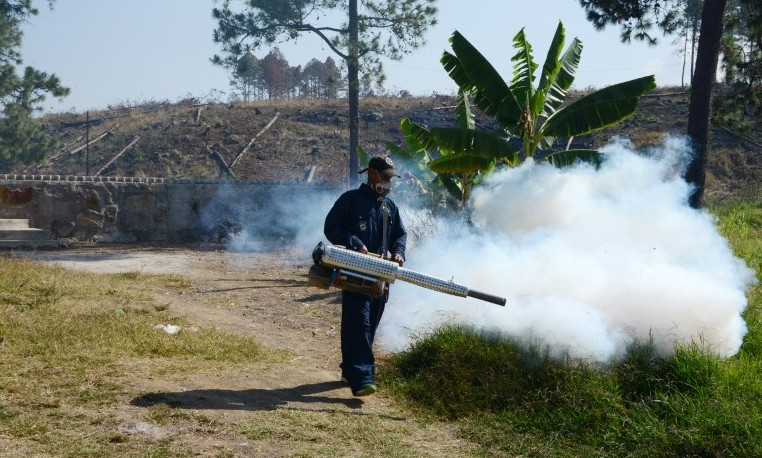 Infección cerebral zika
