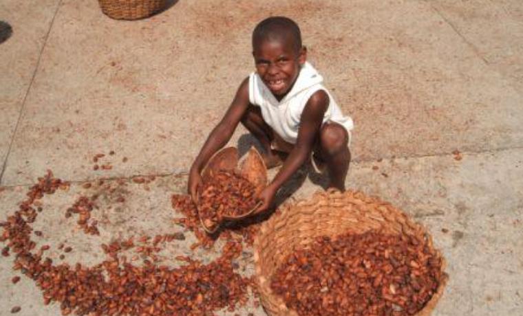 El trabajo infantil en la agricultura