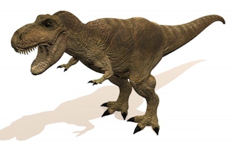 Los dinosaurios luchaban por sobrevivir mucho antes de la caída del meteorito