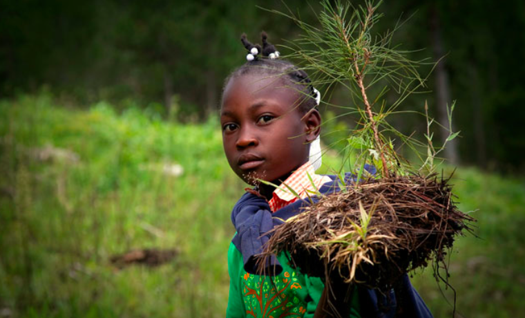 Objetivo #15 de la Agenda de Desarrollo Sostenible y su impacto en las mujeres y las niñas