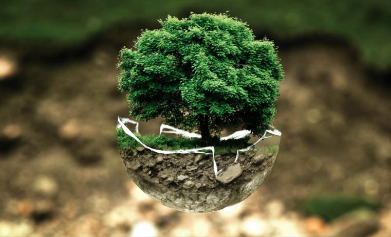 """Nobel de Economía a dos estadounidenses precursores del crecimiento """"verde"""""""