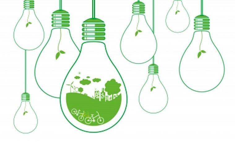 Aportes de la economía ecológica a la gestión ambiental