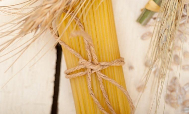 Cultivos OGM no suponen más riesgo para el ambiente y la salud