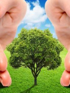 Pensamiento complejo para la expansión de la conciencia socioambiental