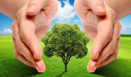 El ambiente en la conversación nacional